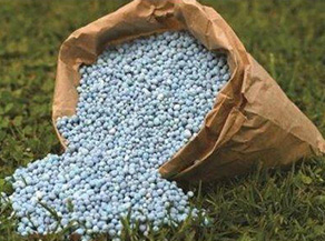 Organic and Chemical Fertilizers